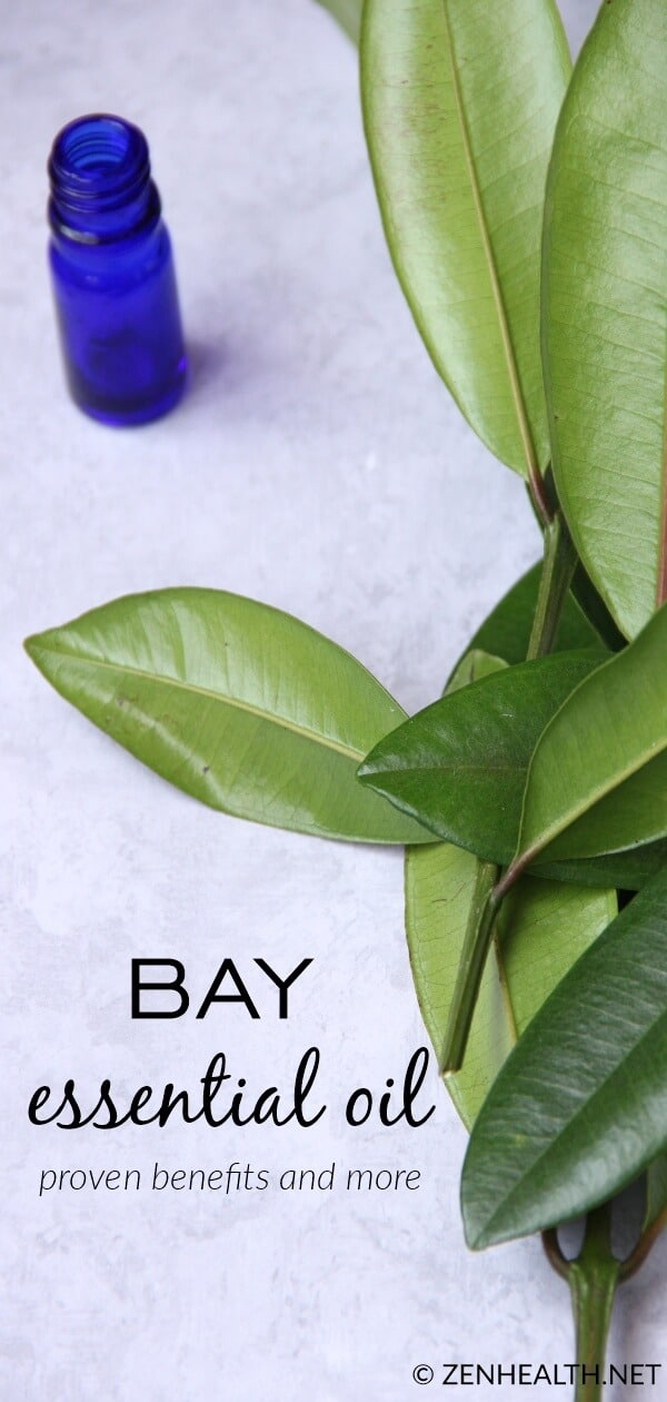 Bay Essential Oil Proven Benefits and More #bayessentialoil #bayoil