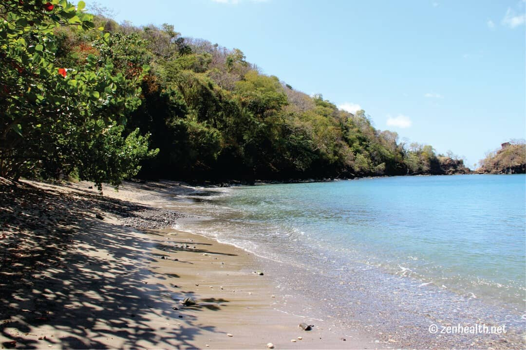 Beaches in Grenada: Dragon Bay
