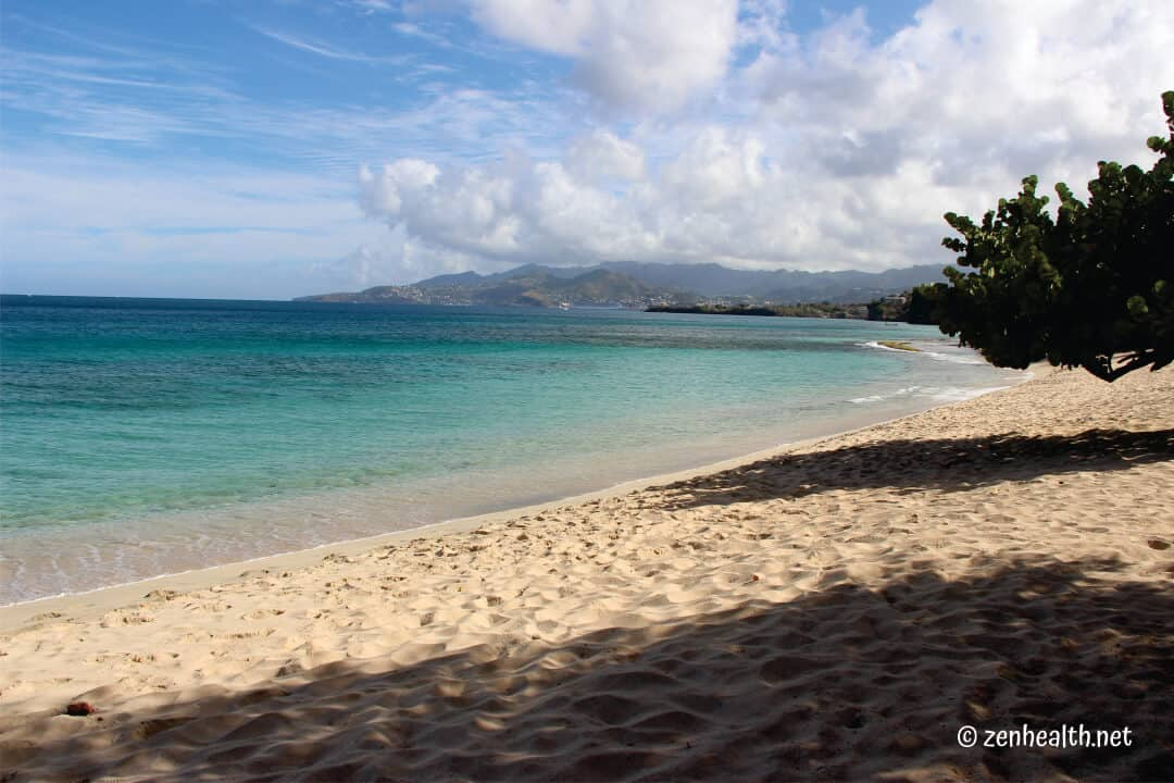 Beaches in Grenada Magazine Beach