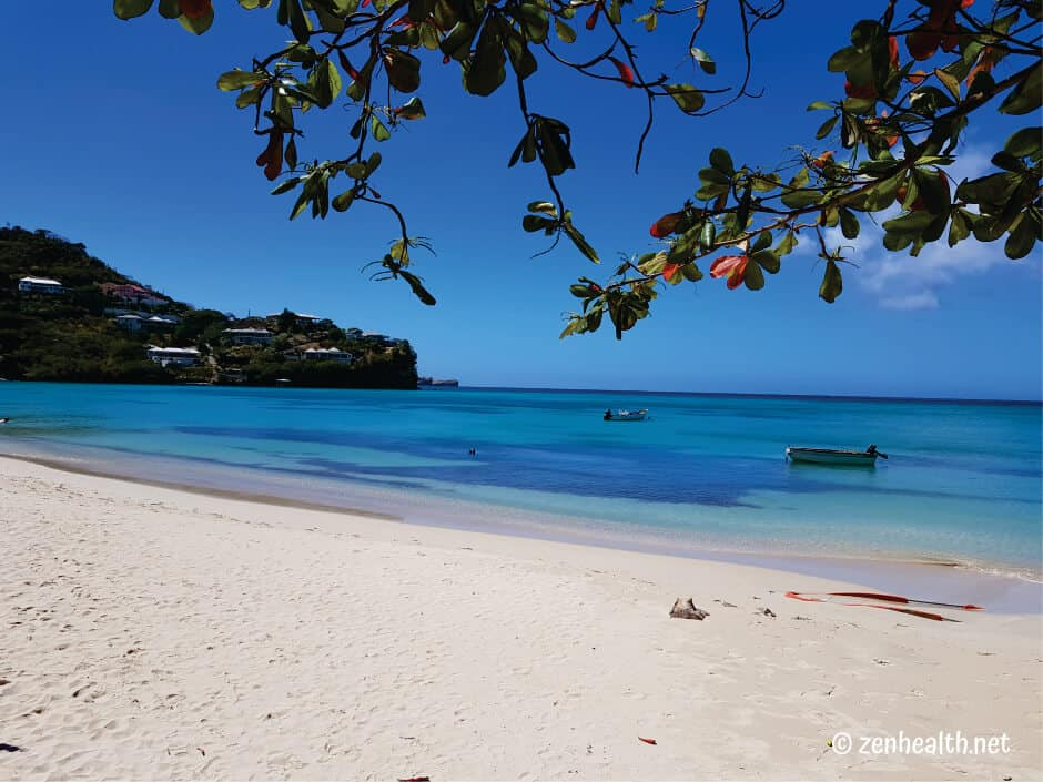 Beaches in Grenada Morne Rouge Beach