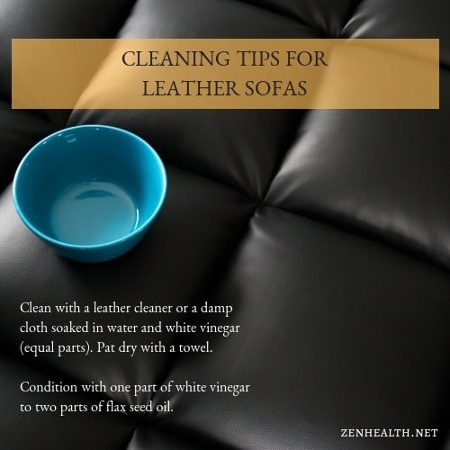 Cleaning Tips for Leather Sofas