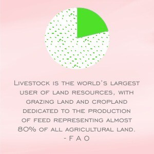 FAO quote: Livestock is the world's largest user of land resources