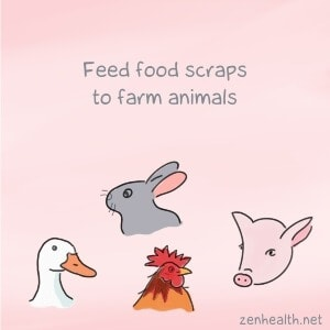 Feed food scraps to farm animals