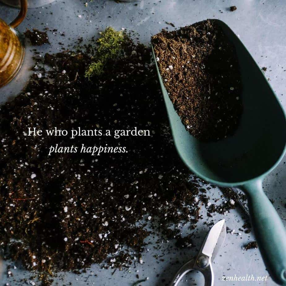 He who plants a garden plants happiness.