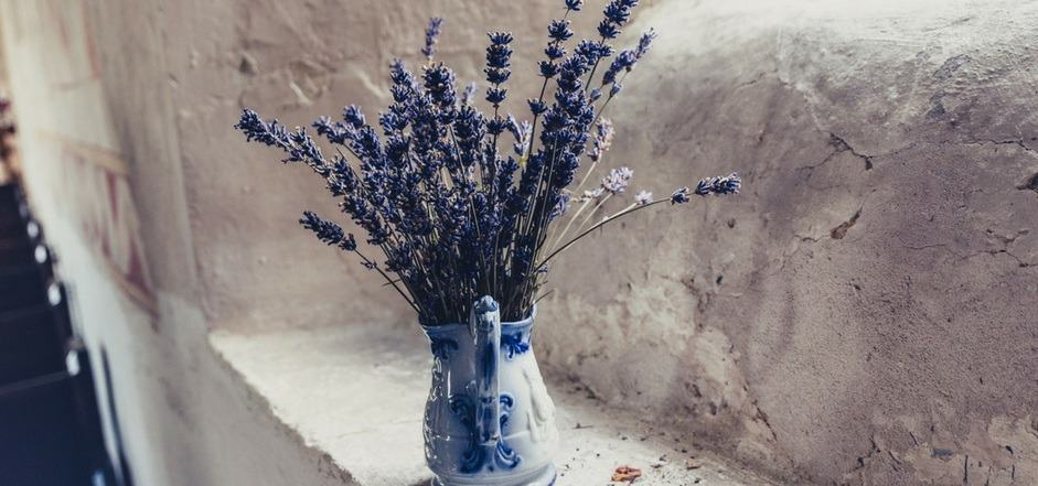 20 Ways to Use Lavender Oil