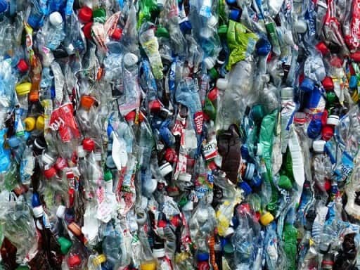 Refuse plastic bottles for a zero waste lifestyle